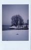 1.100 instant snow (SarahLaBu) Tags: snow winterscene instant instax sofortbild schnee 100xthe2017edition 100x2017 image1100 analog filmphotography fujiinstaxmini8
