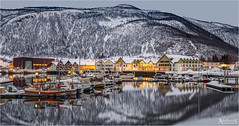 Winter evening in Rognan, Norway (explored) (AdelheidS photography) Tags: adelheidsphotography adelheidsmitt adelheidspictures norway norge noorwegen norwegen noruega norvegia norvege nordic bluehour blue building scenery scandinavia dusk evening reflection rognan nordland slatdalsfjord fjord sea norden boats mountains winter