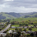 Road North from Paeroa