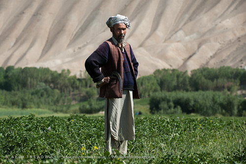 Bamiyan potatoes