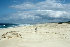 Ocean Beach, Myall Lakes National Park, NSW, 18th September, 1971. (garratt3) Tags: ocean sea film beach rural sand pentax takumar australia bushwalking nsw newsouthwales kodachrome wilderness aus northcoast myalllakesnationalpark