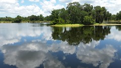 Island in the Clouds (Michel Curi) Tags: nature lake florida fl water reflection sky clouds landscape island ngc continuity