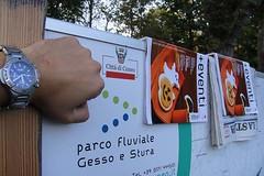 Vitiello_Alessio_10