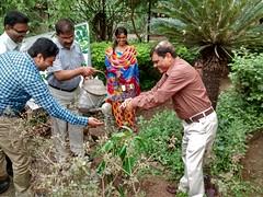 IMG_20150605_115330532_HDR (shOObh group) Tags: tree plantation environment director chairman nios mhrd go2school shoobhgroup shoobhgreen bhartagauba niosgreen nioskonnect