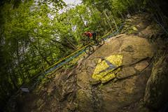 norco gg (phunkt.com) Tags: world mountain cup saint bike race de anne sainte hill keith down du valentine downhill mount mind dh mtb ann uni monte monde mont coupe norco uci welt 2015 phunkt phunktcom