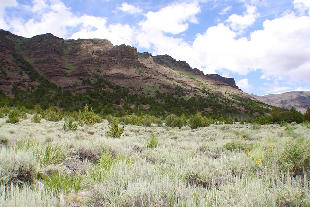Big Indian Trail, Steens Mountain Oregon