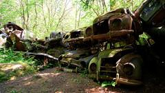 Car graveyard (jarnasen) Tags: old copyright color cars nature woods rust fuji sweden outdoor tripod paisaje nordic sverige scrapyard scandinavia scrap derelict vrmland tonemapped xt1 bstns fujifilmxt1 samyang12mmf2 jrnsen wwwfacebookcomjarnasenphotography