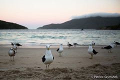 Arraial do Cabo Praia do Forno (Patrick Szymshek) Tags: sea brazil praia brasil riodejaneiro mar hostel arraialdocabo patrickszymshek