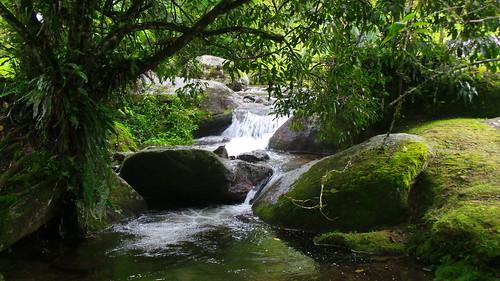 Cachoeira em Trilha