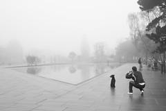 IMG_0433 (Ronan.a) Tags: brouillard nantes