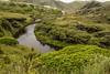 On the walk to the beach (tatlmt) Tags: newzealand southisland nelson abeltasman farewellspit