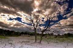 Buon Anno 2017!! (* landscape photographer *) Tags: lucania italy landscapephotographer sunset paesaggio valley valle sinni alberi tree clouds nuvole flickr 2017 nikon sigma 1020