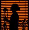 window portrait (zestydill) Tags: window portrait self camera plant lily peace orange hue blinds blind shutter shutters shudder silhouette black shadow shadows canon