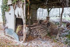 Log store interior, the Nièvre, January 2017 (serial_snapper) Tags: républiquefrançaise building winter nièvredépartement bourgognefranchecomtéregion ciez bourgognefranchecomté france fr