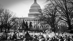 2017.01.29 Oppose Betsy DeVos Protest, Washington, DC USA 00227