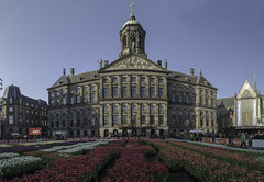 Panorama Tulips in Amsterdam (Rudaki1959) Tags: tulip amsterdam city cityscape flowers netherlands colorful panorama wideangle
