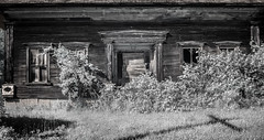 (Rodney Harvey) Tags: abandoned house vermont infrared architecture stark overgrown doors new england rural
