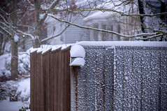 Portland Oregon Snow (Richtpt (Rich Uchytil)) Tags: 2017 oregon pdx portlandor fence january snow winter portland unitedstates us