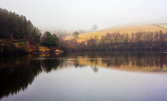 Foggy Reflections (Missy Jussy) Tags: fog moodylandscape atmosphere landscape reflections reservoir water ogden rochdale lancashire northwest england hills hillside trees horizon light sunlight canon canon5dmarkll canon50mm 50mm