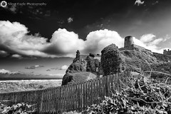 Castle Bamburgh, Northumberland (Silent Eagle  Photography) Tags: sep silent eagle photography canon canoneos5dmarkiii silenteaglephotography bw monochrome castle bamburgh northumberland clouds sea landscape woods plants northeast silenteagle09 iso50