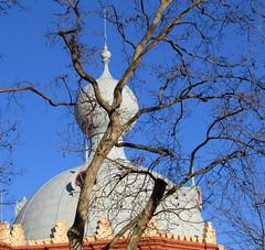 depois dos ramos (Américo Meira) Tags: portugal lisboa campopequeno ramo cúpula dome