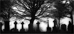 Farnworth cemetery (Pitheadgear) Tags: farnworth cemetery cemteries gravestones graveyards mono monochrome bw blackandwhite northwest lancashire uk bolton