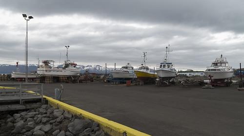 At Húsavík Harbour, 15.07.2016.