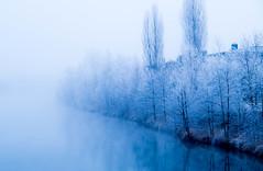 -16°C.jpg (Michael K. Springer) Tags: wetter nebel österreich oberösterreich 2016 winter europa traun austria oö witterung