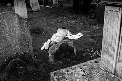 cadid b-w graveyard (izmota1) Tags: by matthew smith