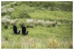 Sometimes I sits and thinks and sometimes i just sits (theimagebusiness) Tags: travel tourism grass rural landscape outside outdoors scotland chairs empty ready twochairs westcoastscotland theelements scottishphotographers theimagebusiness theimagebusinesscouk photographersinwestlothian