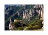 Les gorges de la Jonte (Les 3 couleurs) Tags: argentique aveyron causses gorgesdelajonte caussenoir