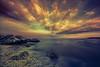 Au bord de l'Etand de Berre (natur'EL photos eric leroy) Tags: istres berre étang plage tortosa canon bouchesdurhone 600d