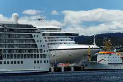 20170115-05-Golden Princess and The World cruise ships in Hobart (Roger T Wong) Tags: 2017 australia gildenprincess hobart rogertwong sel70300g sony70300 sonya7ii sonyalpha7ii sonyfe70300mmf2556goss sonyilce7m2 tasmania theworld boats cruiseships