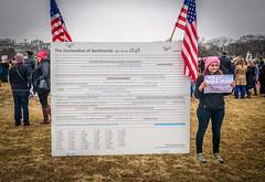 2017.01.21 Women's March Washington, DC USA 2 00152