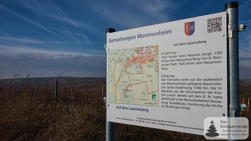 Gemarkung Mommenheim, Lazarienberg