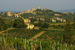 Towers of San Gimignano (Gregor  Samsa) Tags: italy italia summer august toscany tuscana trip exploration roadtrip sangimignano san gimignano vineyard vineyards green greenery sunlight light sun evening rolling rollinglandscape rollinghills house houses