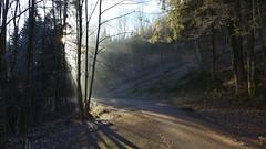 Sonnenstrahlen (Aah-Yeah) Tags: strehtrumpf grassau achental chiemgau bayern sonnenstrahlen sonnenlicht sunlight sunbeams sunshine sunrays nebel fog