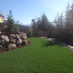 """Retaining wall, grass, lawn, green grass, boulders, rock wall, french drain, backyard, landscaping, landscape <a style=""""margin-left:10px; font-size:0.8em;"""" href=""""http://www.flickr.com/photos/117326093@N05/18169225258/"""" target=""""_blank"""">@flickr</a>"""