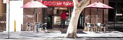 Pie Face (Vincent Albanese) Tags: road street winter people woman plants sun man colour tree eye window glass bike fuji shadows emotion humanity sydney hipster inspired streetphotography australia explore fujifilm colourful moment discover decisive atelier xt1 xf35mm