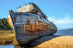Point Reyes (stephencurtin) Tags: california water grass point bay boat wooden sand stranded reyes tomales thechallengefactory