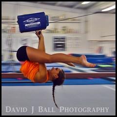 DSC_4402cf (davids_studio) Tags: flip gymnastics cheerleader zipline gym gymnasts
