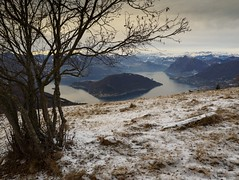 Framed Montisola (Riccardo Palazzani - Italy) Tags: colmi montisola lake iseo brescia lombardia tree sunset tramonto snow frozen monteisola monte isola lago loch see озеро 湖 lac göl بحيرة puesta del sol sonnenuntergang закат 夕日 coucher du soleil 日落 غروب lombardei ロンバルディ 伦巴第大区 lombardie ломбардия لومباردي 롬바르디아 italia italie italien italy 이탈리아 италия itália italië イタリア italya 意大利 إيطاليا riccardo palazzani veridiano3 olympus omd em1 neige neve winter inverno cold alps alpi mountains