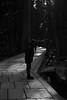 consideration@Kōya-san, Japan (Amselchen) Tags: bw mono serene holy lightandshadow light shadow japaninbw fuji fujinon fujifilm fujifilmxseries xt2 fujixt2 xf35mmf14r black japan 高野山 奥の院
