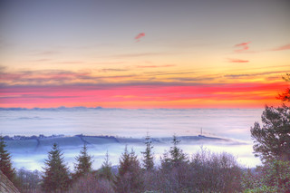 Sea of Fog 24/365