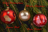 Merry Christmas Kopie (dietmar-schwanitz) Tags: weihnachten christmas noël natale weihnachtschmuck fichte pine farben colours colors grün green rot red gold lightroom nikond750 nikonafsnikkor24120mmf40 photoshopelements dietmarschwanitz