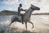 Boyo. Cas en Bas. Saint Lucia (Guido Caltabiano www.guidocaltabiano.com) Tags: horse horses horseriding cavallo beach beachphotography beachlife saintlucia santalucia sunset kitesurf carbbean caraibi isola islanda