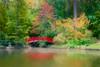 Red Bridge at Sarah P. Duke Gardens (Kayla Stevenson) Tags: northcarolina sarahpdukegardens usa
