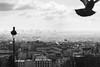 Holy Ghost (Jheronimus) Tags: parijs paris france montmartre frankrijk travel reizen city skyline blackandwhite sky clouds