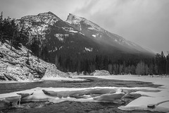 _DSC2804 (andrewlorenzlong) Tags: canada alberta banff national park banffnationalpark bow river bowriver