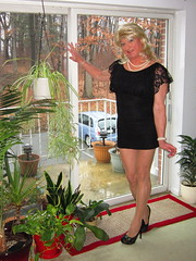 AshleyAnn (Ashley.Ann69) Tags: crossdresser cd crossdressing crossdressed crossdress gurl tgirl tgurl tg tranny ts transvestite tv transexual transgender trans trannybabe tdoll t blonde beauty shemale sexy sissy